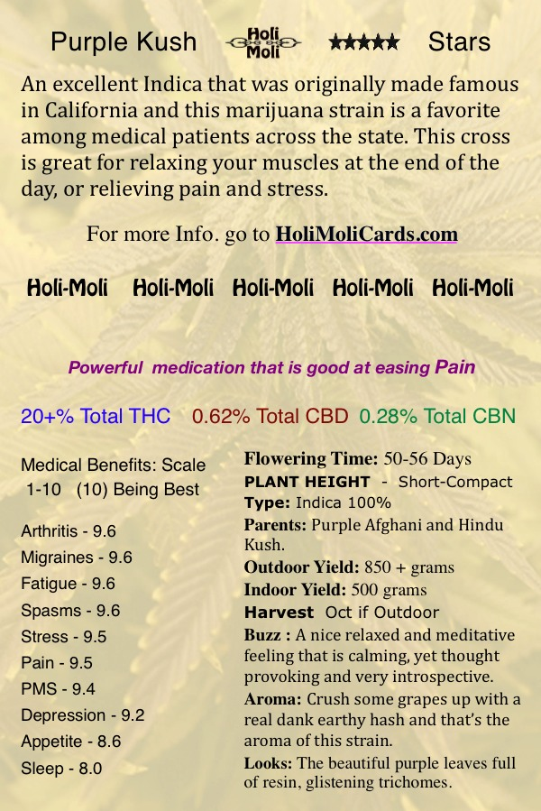Buy Purple Kush cannabis seeds for sale | Holi Moli Seeds